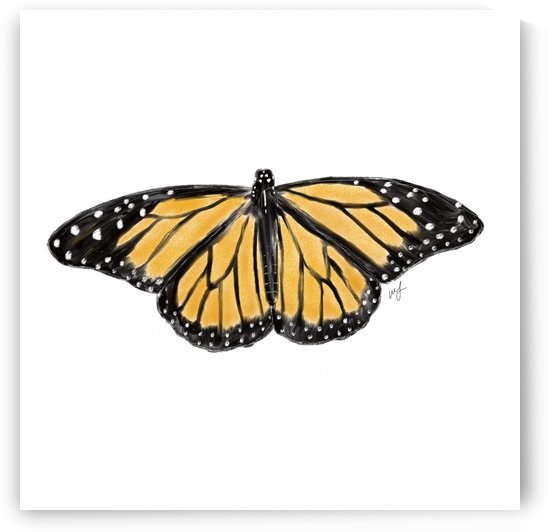 Monarch Butterfly by Brave Season Design