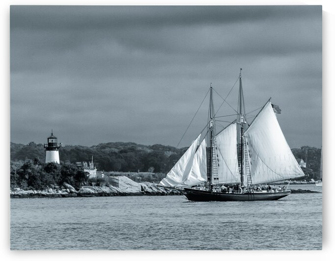 Harbor Cruise by Dave Therrien
