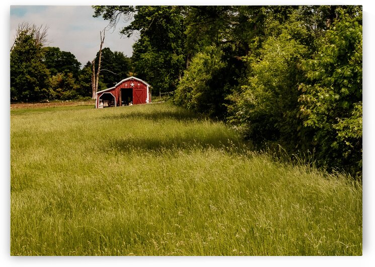 Red Shed by Dave Therrien