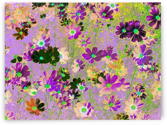 Flowers Garden Purple by Cveti
