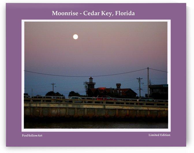 Moon Rise Cedar Key Florida by FoxHollowArt