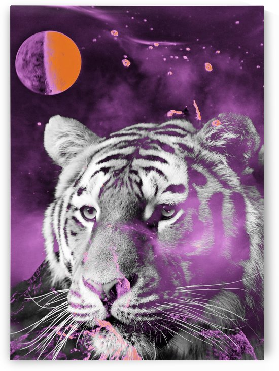 Tiger from the galaxy purple by Thula-Photography