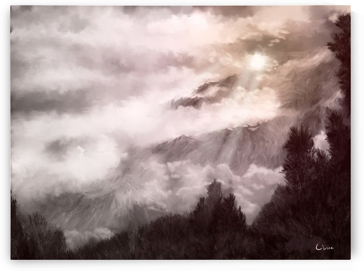 Light in the Storm  by Christine Wise