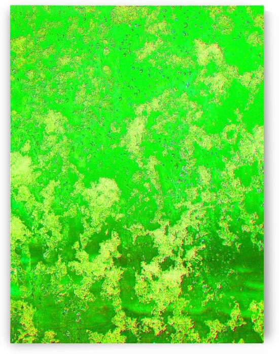 Patterns In Green by FoxHollowArt