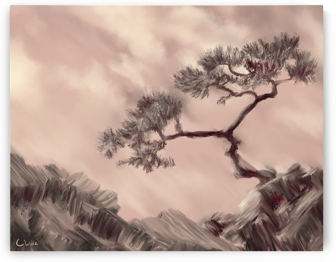 Twisted Pine by Christine Wise