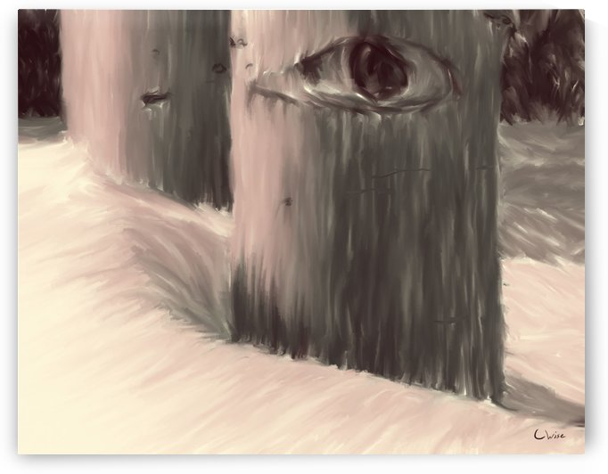 Watcher by Christine Wise