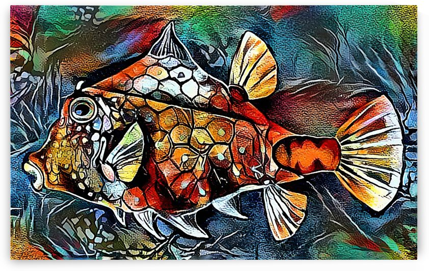Funky Fish Too by HH Photography of Florida