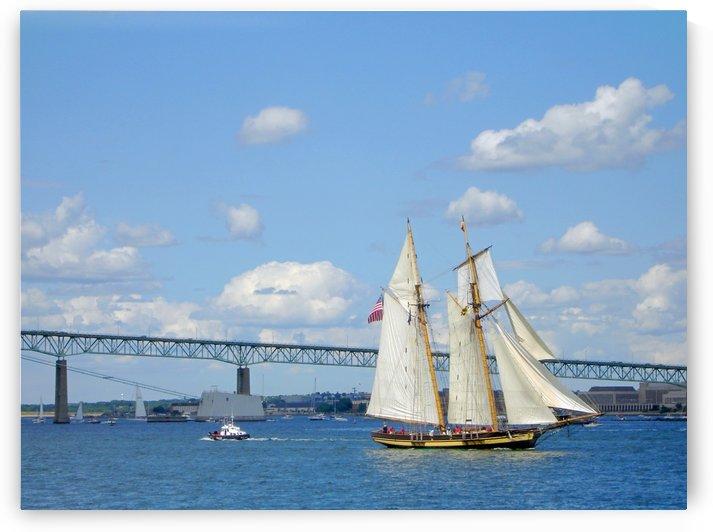Tall Ships  Newport  Rhode Island by FoxHollowArt