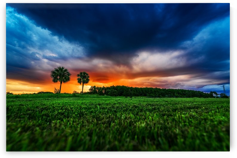 Florida Sunset by Luis Bonetti
