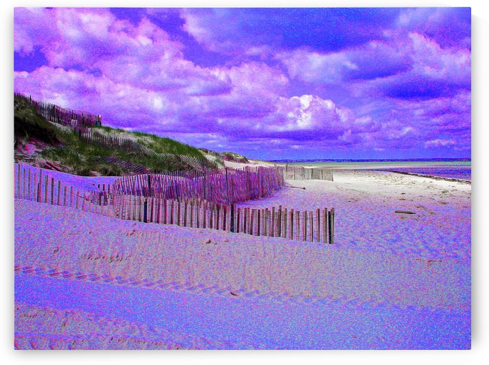 Nauset Beach Cape Cod Massachusetts by FoxHollowArt
