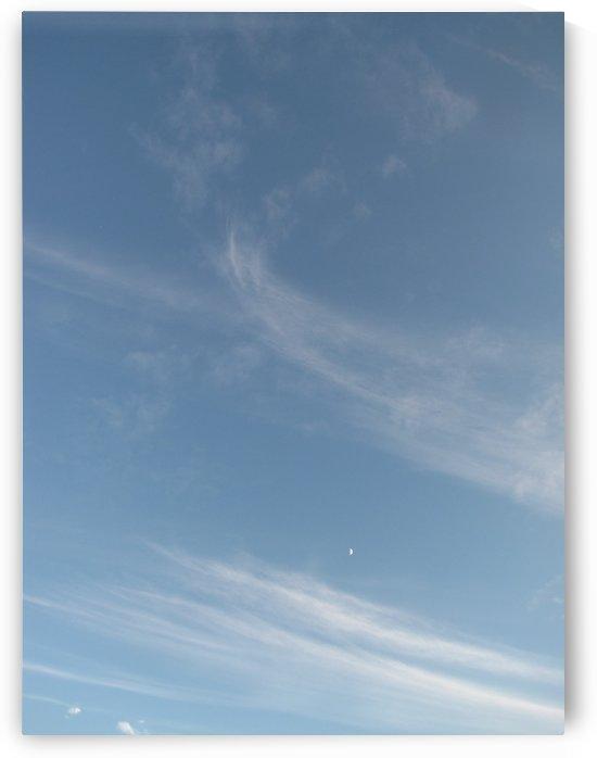 Moon at 9 by Dee Vanggo