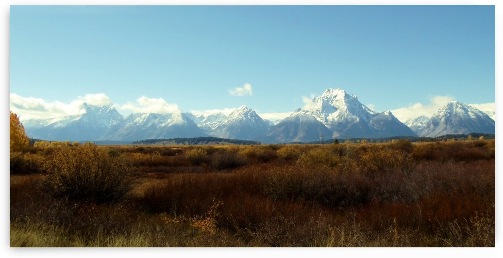 Tetons in the Fall by John Anderson