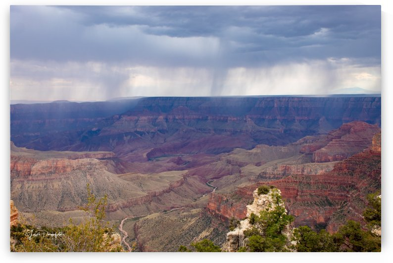 Grand Canyon Rain by Gryphon Photography