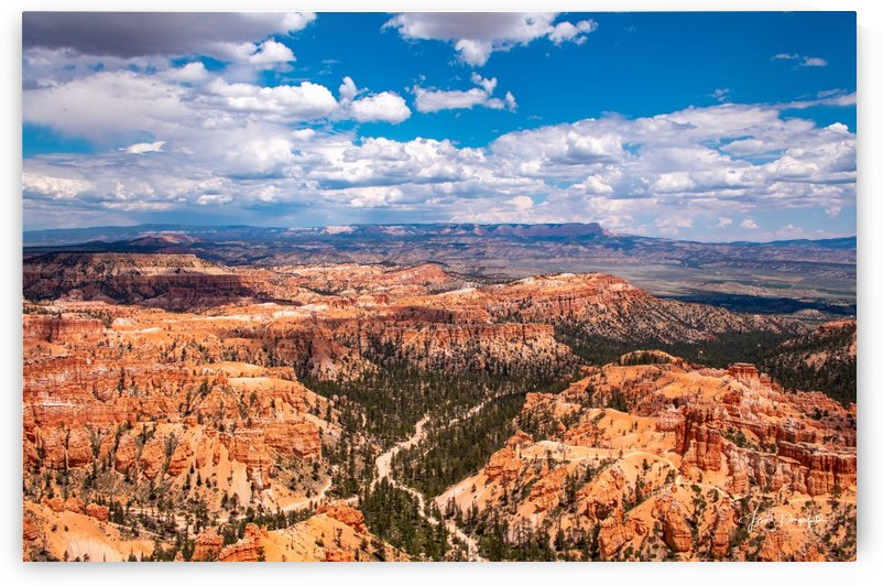Bryce Canyon 5 by Gryphon Photography