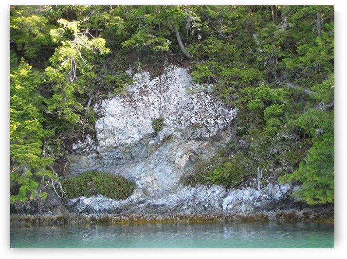White rock by Dee Vanggo