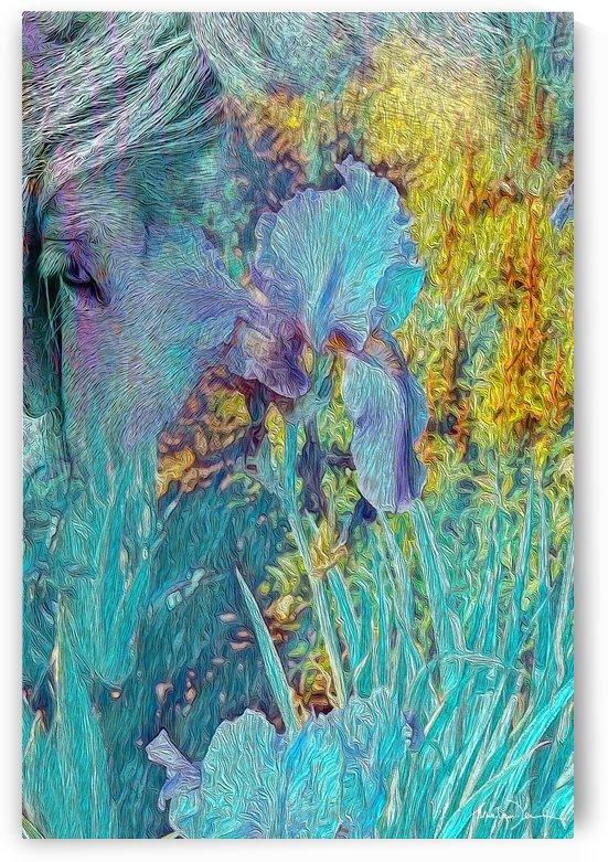 Cheval et iris by Jean-Louis Desrosiers