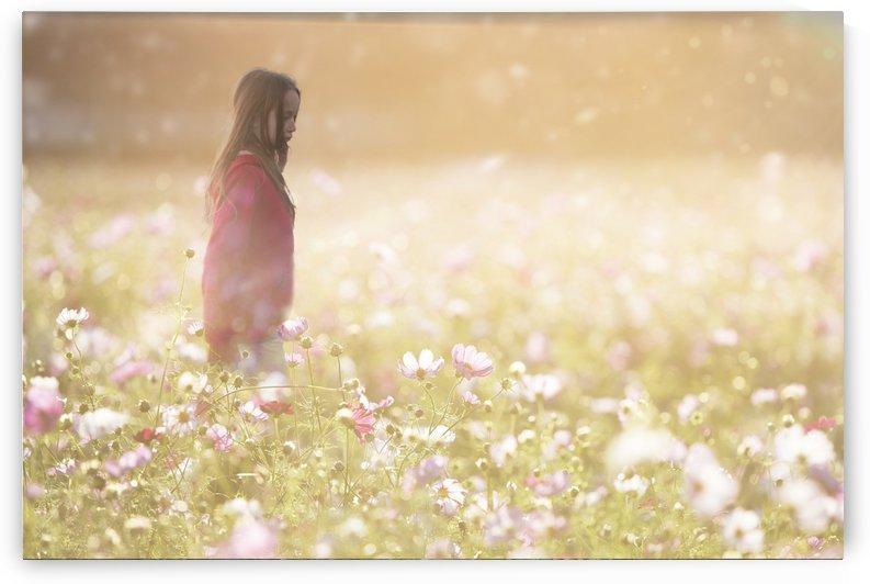 Peaceful Meadow Utah United States by Kathryn Stone