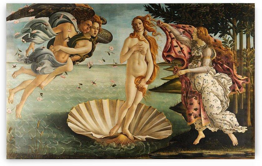 Sandro Botticelli: Birh of Venus HD-300ppi by Stock Photography
