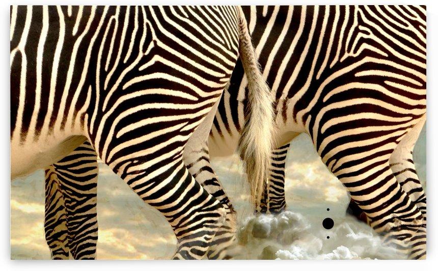 skī zebras by anartlova