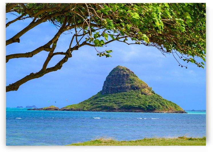 Island Views by Brett P  May