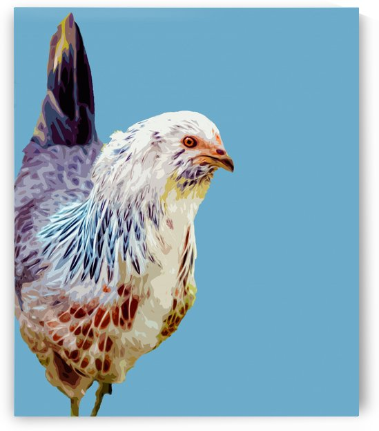 chicken pop art blue by Elizabeth Luce Photography