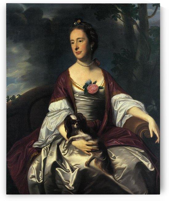 Mrs Jerathmael Bowers by John Singleton Copley