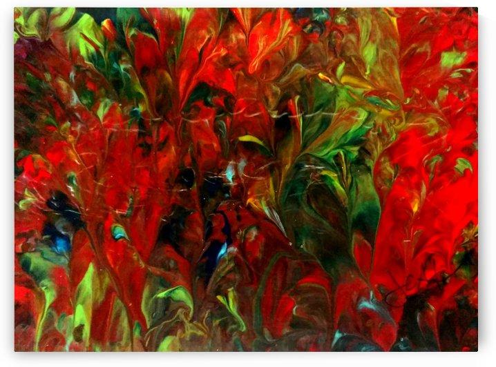 Wild Gladiolus by J C Adams