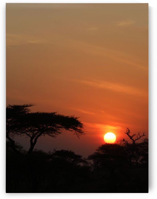 Glorious African Sunset by Eliot Scher