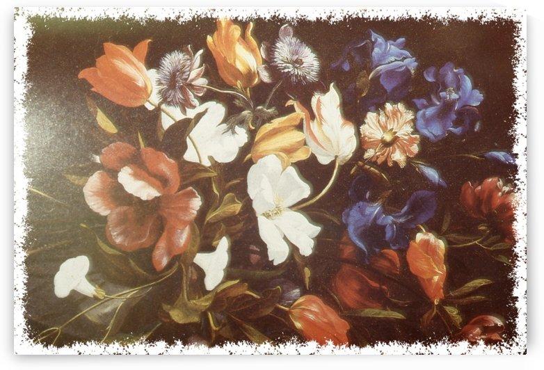 Floral Explosion  by  Gloria Nova