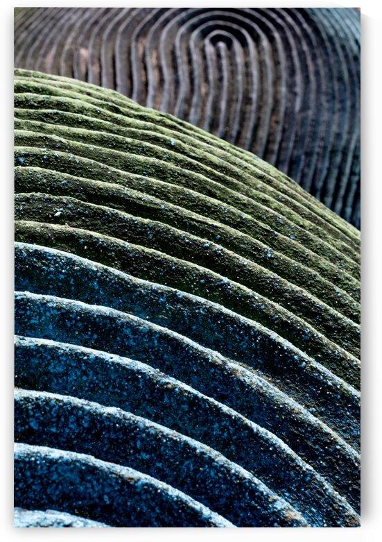 NOLA Sculpture by Dave Therrien
