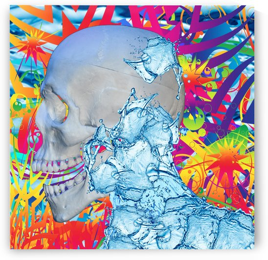 Skull in Color and Water by Matthew Lacey