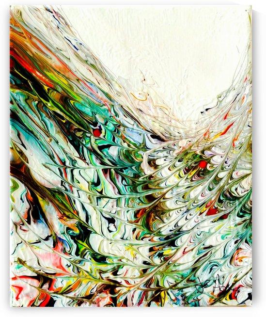 Splash by J C Adams