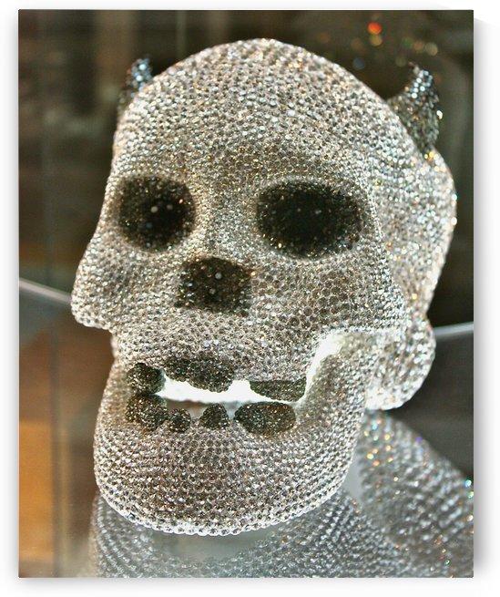 Paris Crystal Skull by Tony Forcucci