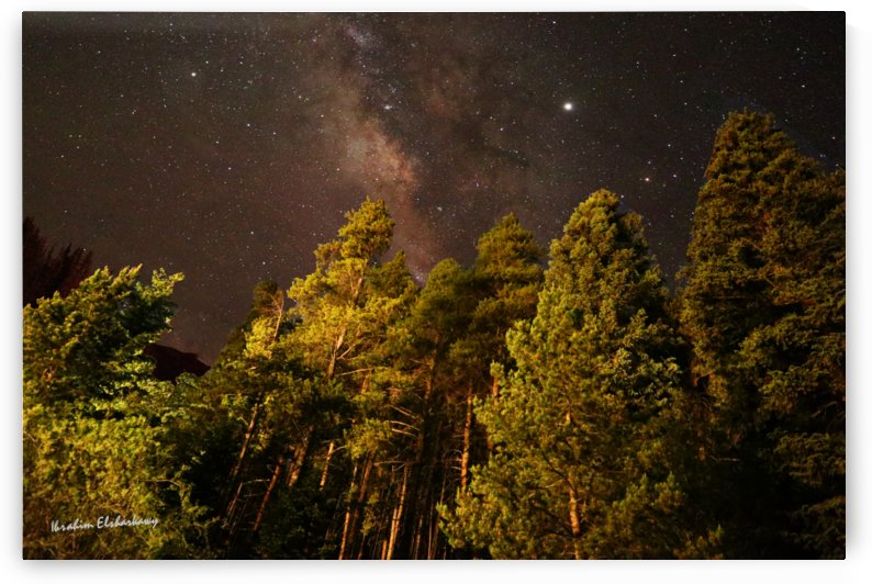 Awe-inspiring Milkyway casting over forest by Ibrahim Elsharkawy