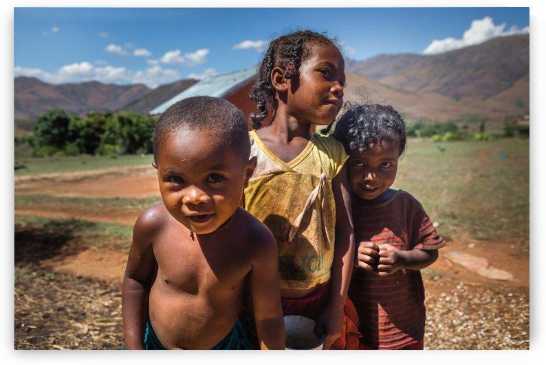 Three friends by Papdi Zoltan Silvester