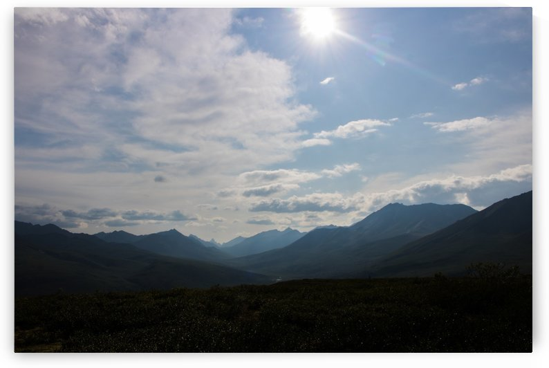 Dempster Highway   24 by Laurie Kindred