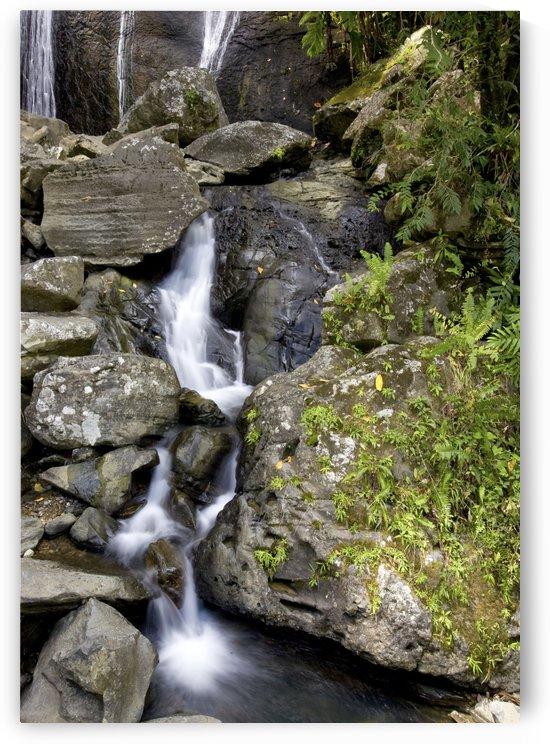 Waterfall by Eliot Scher