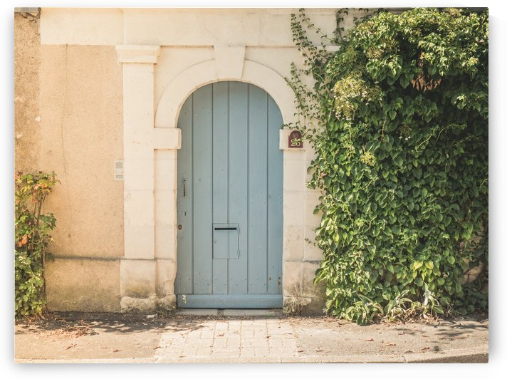 Old Door with Climbing Plant in France by Art By Dominic