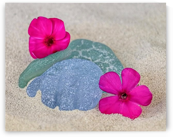 Flowers and sea glass by Photography by Janice Drew