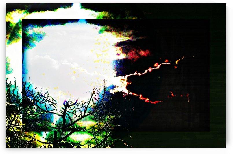 Dark Sun by Bearze