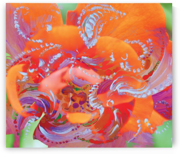 floral swirling by BBS Art