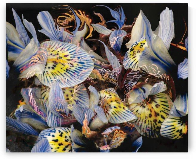 dominant indigo petals abstraction by BBS Art