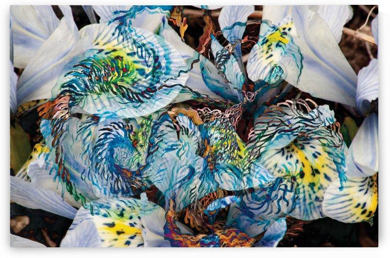 light blue abstract art by BBS Art