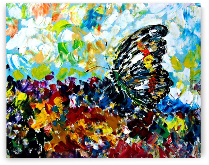 AO - Beautiful Butterfly by Clement Tsang