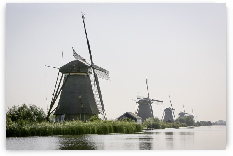 Windmills from Holland  by Edwin De Smet