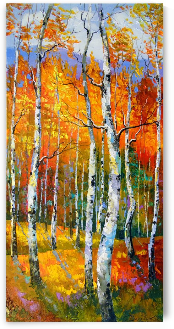 Birch in sunlight by Olha Darchuk
