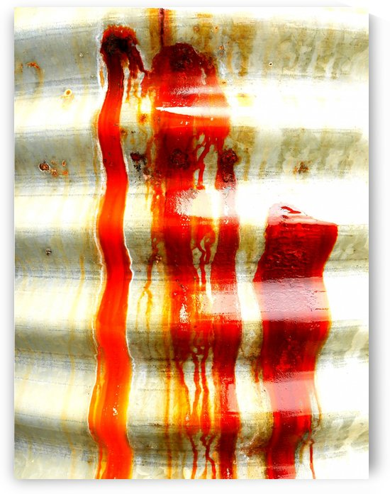 Corrugated Iron Series 1 by Lexa Harpell