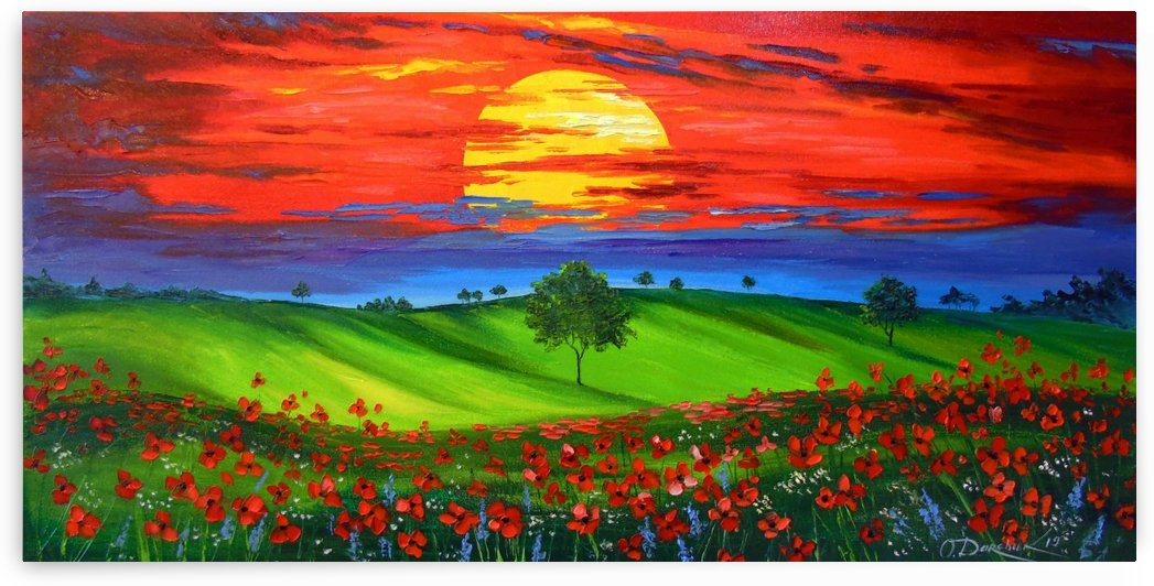 Sunset over poppy field  by Olha Darchuk