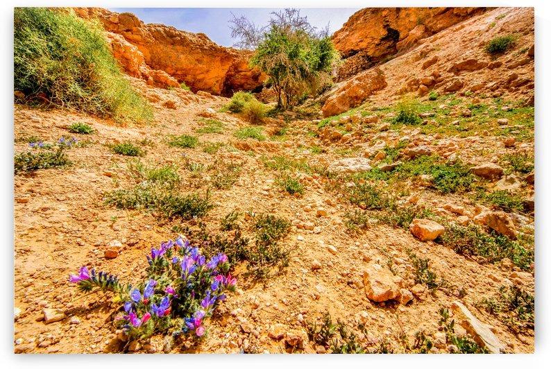 Grotte Sahara by agencetourdumonde com