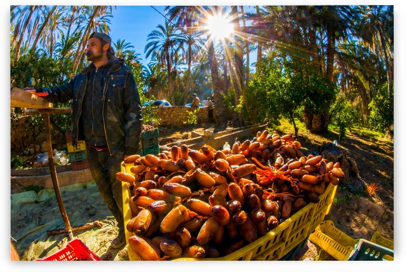 Vendeur de dattes by agencetourdumonde com